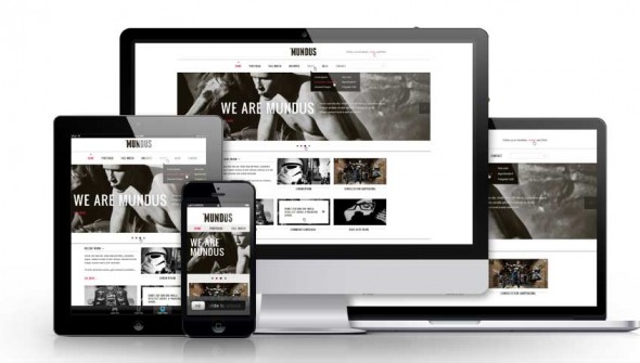 Responsive-showcase-presentation